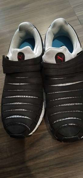 Orignal puma shoes for sale buying from USA