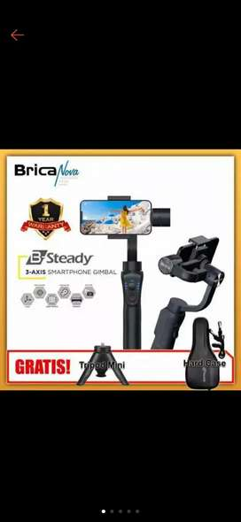 Brica  B steady