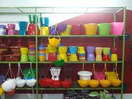 Indoor Plants Pot from 10/- onwards.