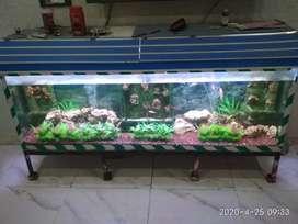 Fish tank 4 feet width 3 feet hight anyone want to buy call me