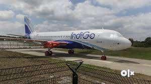 urgent hiring in indigo airlines apply fast 0