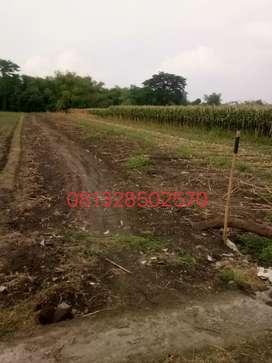 Tanah kapling komplek perumahan