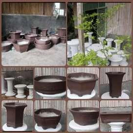 Pot Bonsai dan Hong/Pilar Bonsai