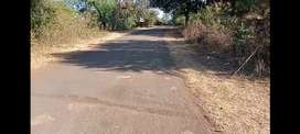 1.5 Acre Farm Land only 25 kms from Bhopal Airport