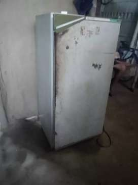 Fridges is in very good condition