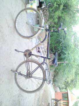cycle 3000