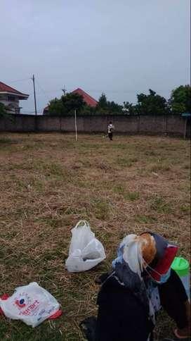 Jasa potong rumput, taman , kebun , lapangan dll