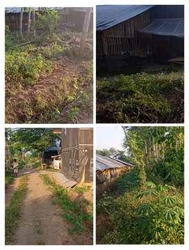Lahan Ternak 1900m2 area Klaten 325jt