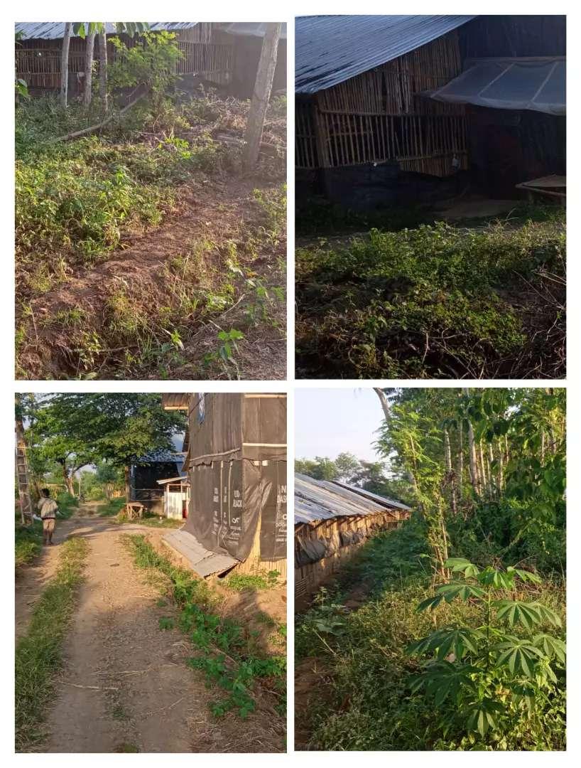 Lahan Ternak 1900m2 area Klaten 325jt 0