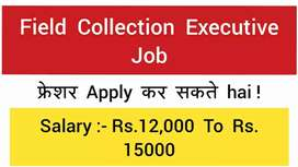 Need Field executive/document payment collection vacancy bike/DL must