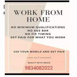 Part time home based job data entry work