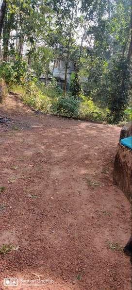 8.5 cent property for sale near Kottamuri, Thrickodthanam