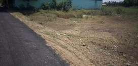 Saravanampaty to villakurchi road 5.5 CENT NORTH FACING DTP SITE SALE