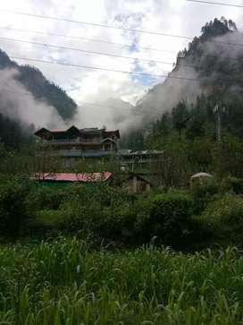 Required Cook (veg,non-veg) for working in cafe in kasol Himachal