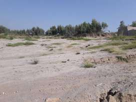 30 kanal Land for sale Rs 5 Lac per kanal