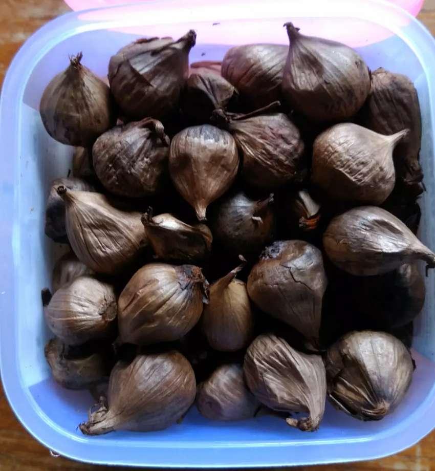 Black Garlic Tunggal 0
