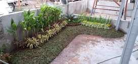 Tukang ahli dekorasi taman rumah-taman halaman rumah-taman indoor