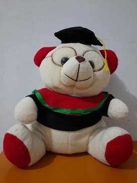 Boneka Wisuda Murah