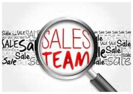 Area Sales manager- Mysore region