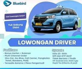 Butuh Driver online