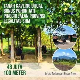 Jual Kavling Bonus Pohon Jati Pinggir Jalan View Pegunungan
