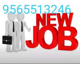.Urgent Required Back-Office Candidate