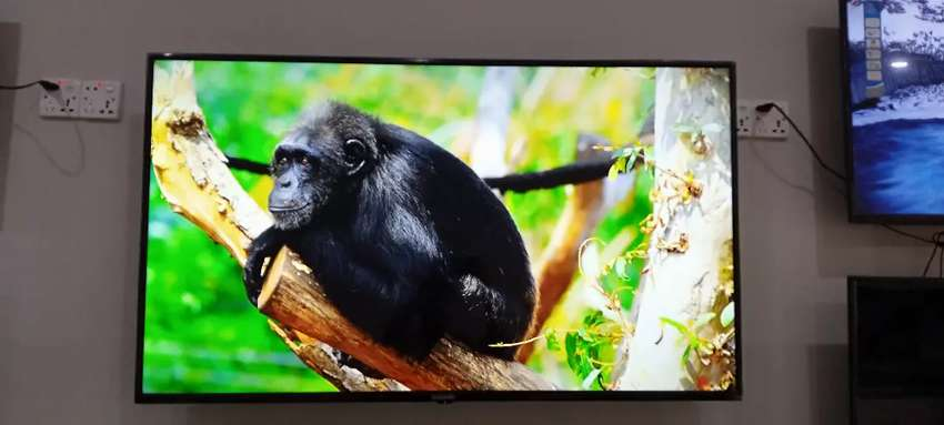 55 inch Smart led tv YouTube Netflix mobile wireless display connect