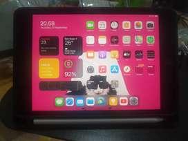 Jual Apple Ipad Mini 5 wifi 256GB Murah Lengkap Istimewa