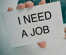 Need a job. I am fresher & arts graduate.