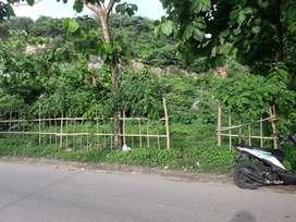 Tanah pinggir jalan
