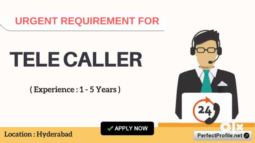 Required Male Female Telecallers*** 0