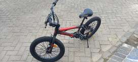 Pacific Spinix 3.0 ban besar sepeda BMX