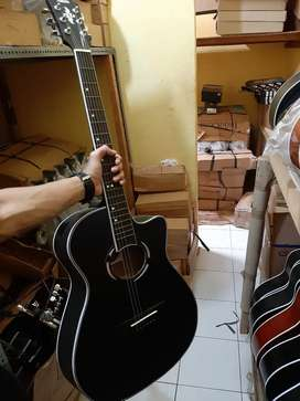Gitar Akustik APX500 Doff New Year