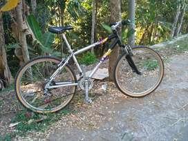 Sepeda MTB polygon xtrada vbrake ban 26