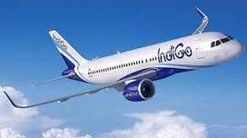 URGENT REQUIREMENT IN INDIGO AIRLINE COMPANY FOR FRESH/EXPERINCE ALL.
