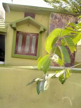 Nice house with nice amenities urgent selling