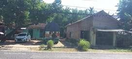 Jual tanah di Desa Alasdowo Kec. Dukuhseti