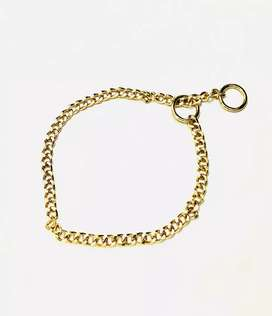 Dog choke chain gold plated
