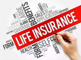 Cochin/Life insurance/100%Field sales job/Degree pass is must