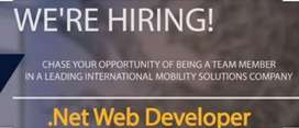 Wanted net developers