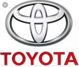Toyota all over india