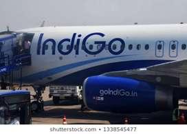 Urgent job opening in airport authority
