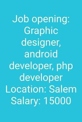 IT developer