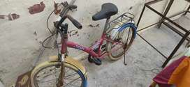 Child cycle