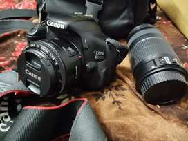 Canon 600D latest dslr in cheap rate with bill