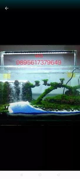 Aquascape murah meriahh