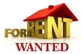 Wanted house for rent