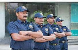 Urgent requirement in security guard