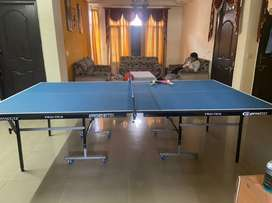 TT table table tennis full size with laminated top