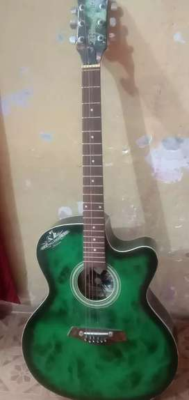 guitar of black green shade *Cash Payment*